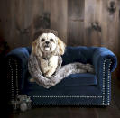 This photo provided by Pottery Barn shows the company's Chesterfield Pet Bed. No longer are furniture companies content to offer you staples like a sofa, easy chair and bed. Now they have those items for your pet, too, designed not to clash with the rest of your decor. Pottery Barn, Crate and Barrel, Ikea, Casper mattresses and other popular furniture purveyors have lines for pets, often in styles that complement their human-size living room furniture. (Pottery Barn via AP)