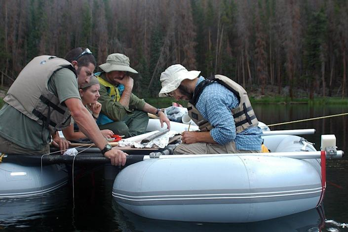 Scientists on a raft examining a sediment core