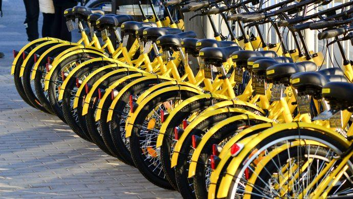 ofo bike-rental operations halted by local government