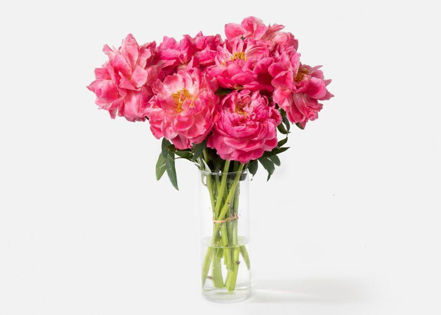 """<p>urbanstems.com</p><p><a href=""""https://go.redirectingat.com?id=74968X1596630&url=https%3A%2F%2Furbanstems.com%2Fflowers&sref=https%3A%2F%2Fwww.thepioneerwoman.com%2Fhome-lifestyle%2Fg36079719%2Fbest-flower-delivery-services%2F"""" rel=""""nofollow noopener"""" target=""""_blank"""" data-ylk=""""slk:Shop Now"""" class=""""link rapid-noclick-resp"""">Shop Now</a></p><p>In need of flowers delivered fast? UrbanStems has you covered. With next day and same day delivery available, they'll make sure your recipient has their arrangement in no time. You can also choose to add a vase for an extra fee.</p><p><strong>Shop this bouquet: </strong>The Sunburst, $90 at <a href=""""https://go.redirectingat.com?id=74968X1596630&url=https%3A%2F%2Furbanstems.com%2Fproducts%2Fflowers%2Fthe-sunburst%2FFLRL-B-00503.html&sref=https%3A%2F%2Fwww.thepioneerwoman.com%2Fhome-lifestyle%2Fg36079719%2Fbest-flower-delivery-services%2F"""" rel=""""nofollow noopener"""" target=""""_blank"""" data-ylk=""""slk:UrbanStems"""" class=""""link rapid-noclick-resp"""">UrbanStems</a></p>"""