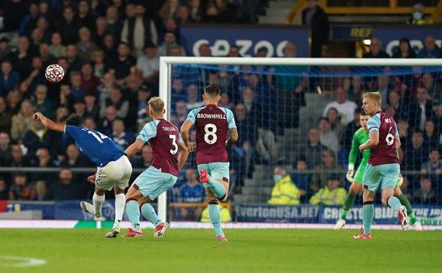 Andros Townsend scored a stunning goal to put Everton in front