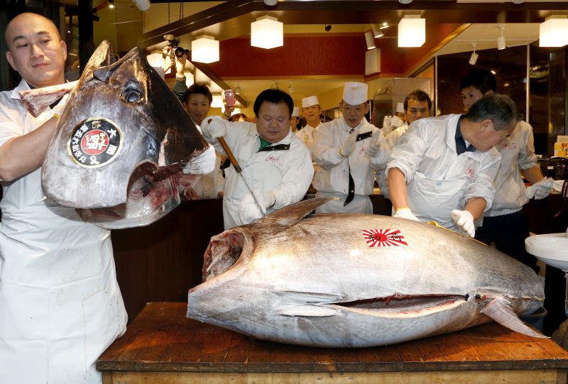 Sushi restauranteur Kiyoshi Kimura, second from left, cuts a 507-pound (230-kilogram) bluefin tuna he bought at the year's celebratory first auction at his restaurant near Tsukiji fish market in Tokyo, Sunday, Jan. 5, 2014. Kimura paid 7.36 million yen (about $70,000) for the bluefin tuna in the auction, just one-twentieth of what he paid a year earlier despite signs the species is in serious decline. (AP Photo/Shizuo Kambayashi)