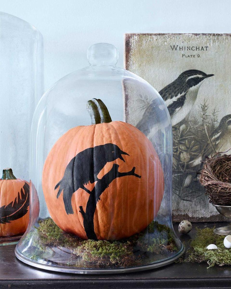 """<p>Paint a black bird or feather onto your orange pumpkin and then set it in a bed of moss inside a glass cloche.<br></p><p><a class=""""link rapid-noclick-resp"""" href=""""https://www.amazon.com/MyGift-Decorative-Display-Tabletop-Centerpiece/dp/B01FL7Q5GY/ref=sr_1_11?tag=syn-yahoo-20&ascsubtag=%5Bartid%7C10055.g.33437890%5Bsrc%7Cyahoo-us"""" rel=""""nofollow noopener"""" target=""""_blank"""" data-ylk=""""slk:SHOP CLOCHES"""">SHOP CLOCHES</a></p>"""