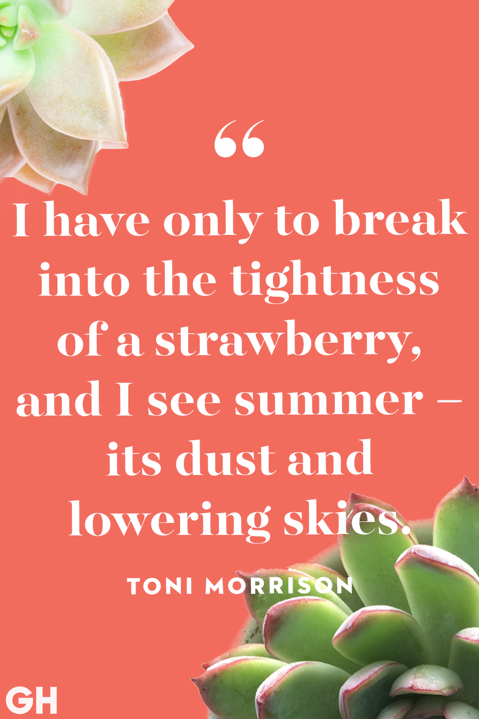 """<p>""""I have only to break into the tightness of a strawberry, and I see summer – its dust and lowering skies.""""</p>"""