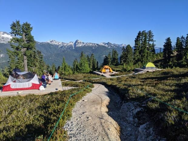 Campers are pictured at Garibaldi Provincial Park on Aug. 15. The reservation system for provincial parks in B.C. opened Monday, crashing quickly due to high volume. (Shutterstock / CDeWeger - image credit)