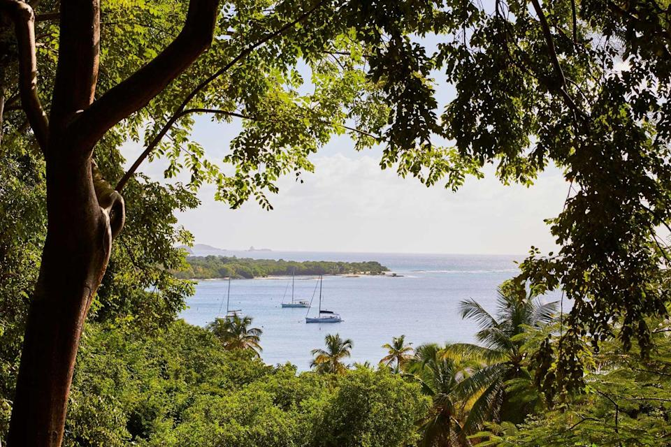 Mustique island in the Grenadines