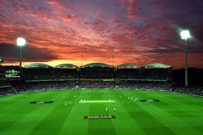 Australia and New Zealand contest the first-ever day-night Test in Adelaide: AFP/Getty Images