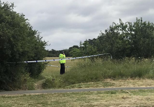 The women's bodies were found next to each other at Fryent Country Park in Wembley, north-west London. (SWNS)