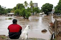 A man and his dog look at a flooded area in El Progreso, in the Honduran department of Yoro, after the passage of Hurricane Iota in November 2020