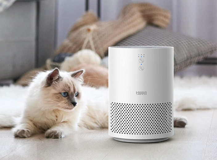 An effortless way to make your home healthier. (Photo: Amazon)