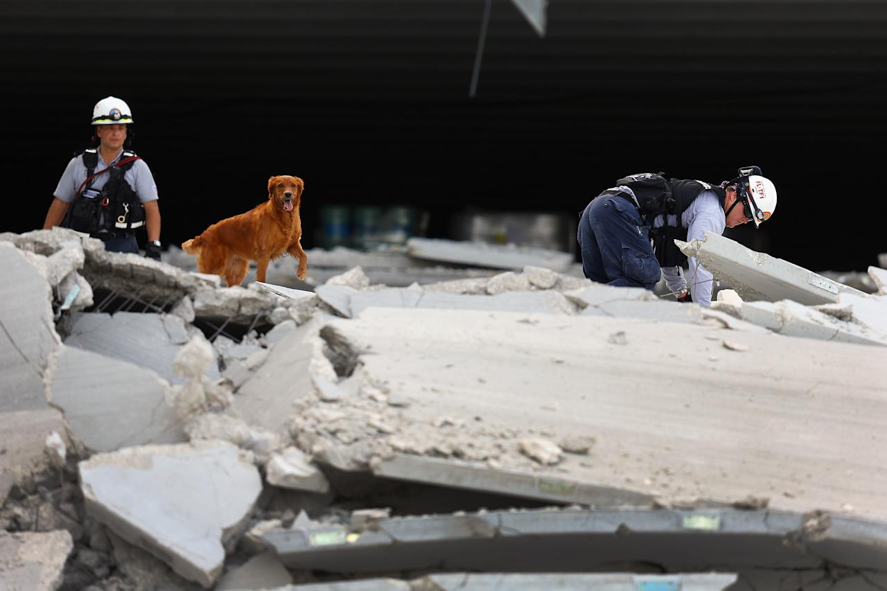 DORAL, FL - OCTOBER 10:  Miami-Dade Fire Rescue search and rescue workers search in the rubble of a four-story parking garage that was under construction and collapsed at the Miami Dade College's West Campus on October 10, 2012 in Doral, Florida.  Early reports indicate that one person was killed, at least seven people injured and one is still trapped.(Photo by Joe Raedle/Getty Images)