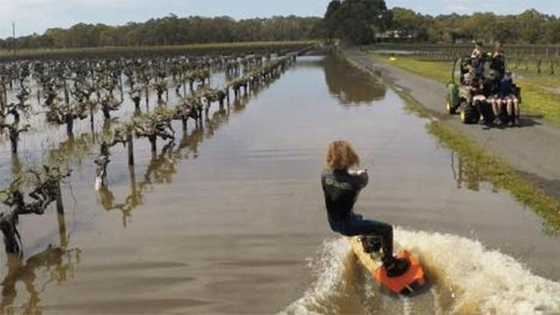 Ryland Willis tied a ski rope to a farm buggy and wakeboarded across a flooded vineyard in Langhorne Creek. Photo: Facebook