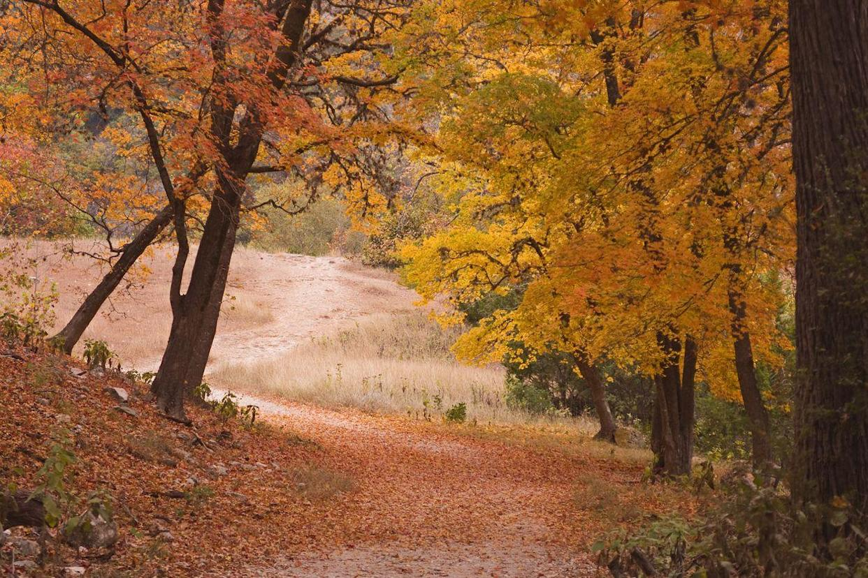 texas hill country fall