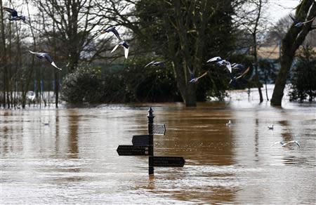 Birds fly past a sign surrounded by flood waters in Worester, central England, February 13, 2014. REUTERS/Darren Staples