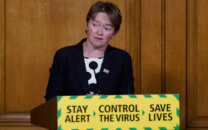 Dido Harding said there were no plans to roll out antibody testing until 'the science gives us that answer we're searching for' - Shutterstock
