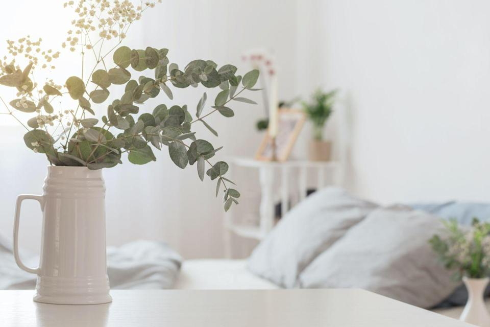 """<p>'The scent of eucalyptus is the driving factor that keeps arachnids out of your home,' Evie says. </p><p>'Add sprigs of eucalyptus around your <a href=""""https://www.housebeautiful.com/uk/decorate/bathroom/a37372629/bathroom-trends-features-increase-property-value/"""" rel=""""nofollow noopener"""" target=""""_blank"""" data-ylk=""""slk:bathroom"""" class=""""link rapid-noclick-resp"""">bathroom</a>, kitchen and living room. You can also mix a few leaves with witch hazel and water and spray any areas that a spider could hide to prevent them from making webs in any discreet corners or <a href=""""https://www.housebeautiful.com/uk/lifestyle/cleaning/a37063595/eco-friendly-cleaning-cupboard-quiz/"""" rel=""""nofollow noopener"""" target=""""_blank"""" data-ylk=""""slk:cupboards"""" class=""""link rapid-noclick-resp"""">cupboards</a>.' </p>"""