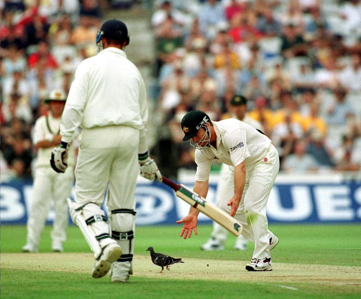 7 Jul 2001:  Michael Slater of Australia chases off a pigeon during the third day of the England v Australia first test match at Edgbaston, Birmingham. Mandatory Credit: Hamish Blair/ALLSPORT
