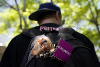 Saige Douglas of Denver carries a Britney Spears doll in his backpack outside a court hearing concerning the pop singer's conservatorship at the Stanley Mosk Courthouse, Wednesday, June 23, 2021, in Los Angeles. (AP Photo/Chris Pizzello)