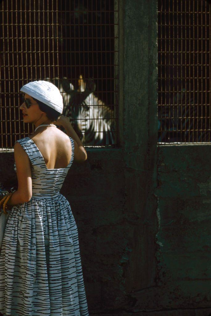 <p>In a stripes-on-stripes moment, Princess Margaret wore a patterned dress to meet a zebra at an Arusha, Tanzania animal farm.</p>