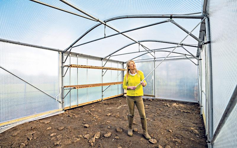 Tunnel vision: Bunny Guinness, pictured, now appreciates the benefits of a polytunnel - Andrew Crowley for the Telegraph