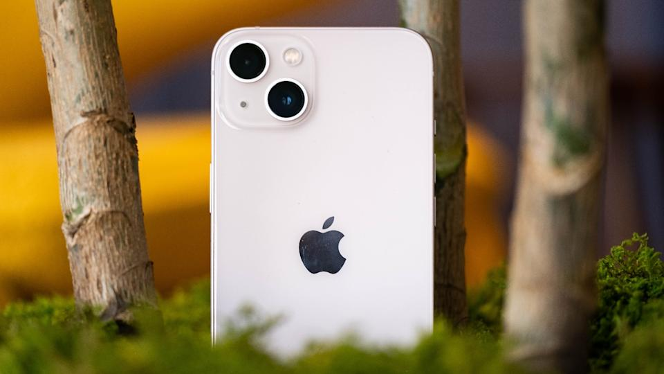 A pink iPhone 13 nestled in a planter with its rear cameras facing us.