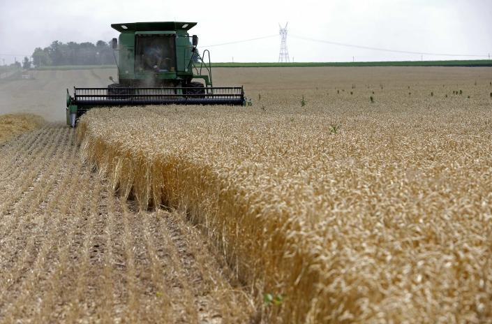 A combine drives over stalks of soft red winter wheat during the harvest on a farm in Dixon, Illinois, in this July 16, 2013 file photo. Across the U.S. Midwest, the plunge in grain prices to near four-year lows is pitting landowners determined to sustain rental incomes against farmer tenants worried about making rent payments because their revenues are squeezed. REUTERS/Jim Young/Files (UNITED STATES - Tags: AGRICULTURE ENVIRONMENT)