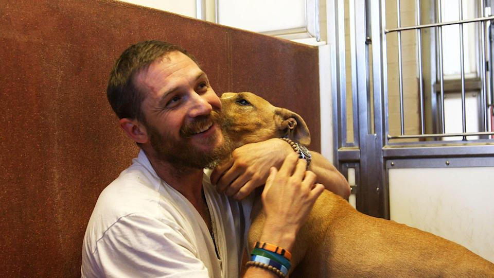 Tom Hardy gives free hugs on For the Love of Dogs