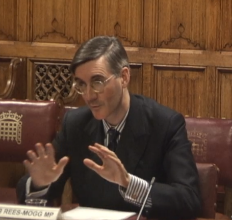 <strong>Jacob Rees-Mogg at the human rights committee</strong> (Parliament TV)
