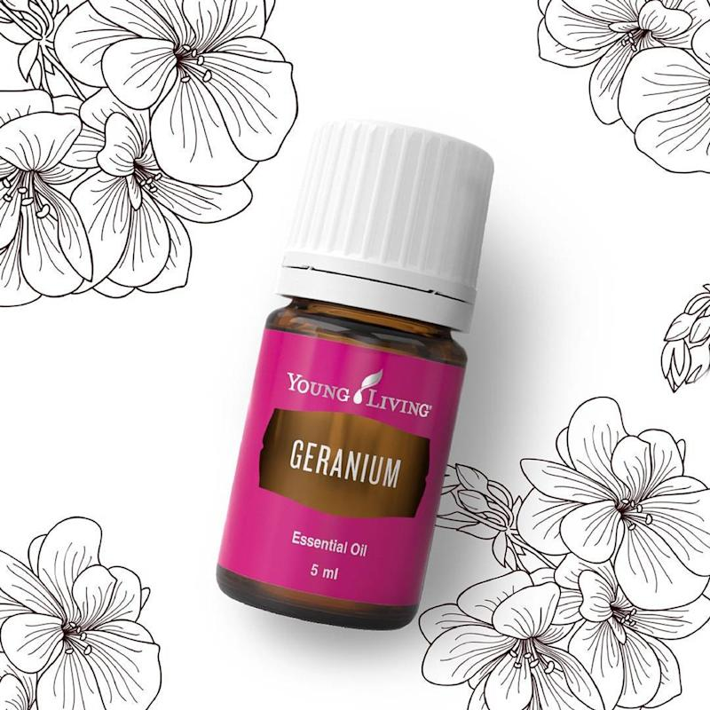 The Deal With The Young Living Essential Oils All Your Fb Friends