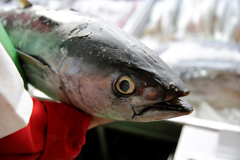 A vendor holds a Mexican tuna at a fish market in Mexico City