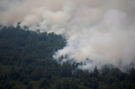 Smog covers trees during a forest fire in Palangka Raya, Central Kalimantan province