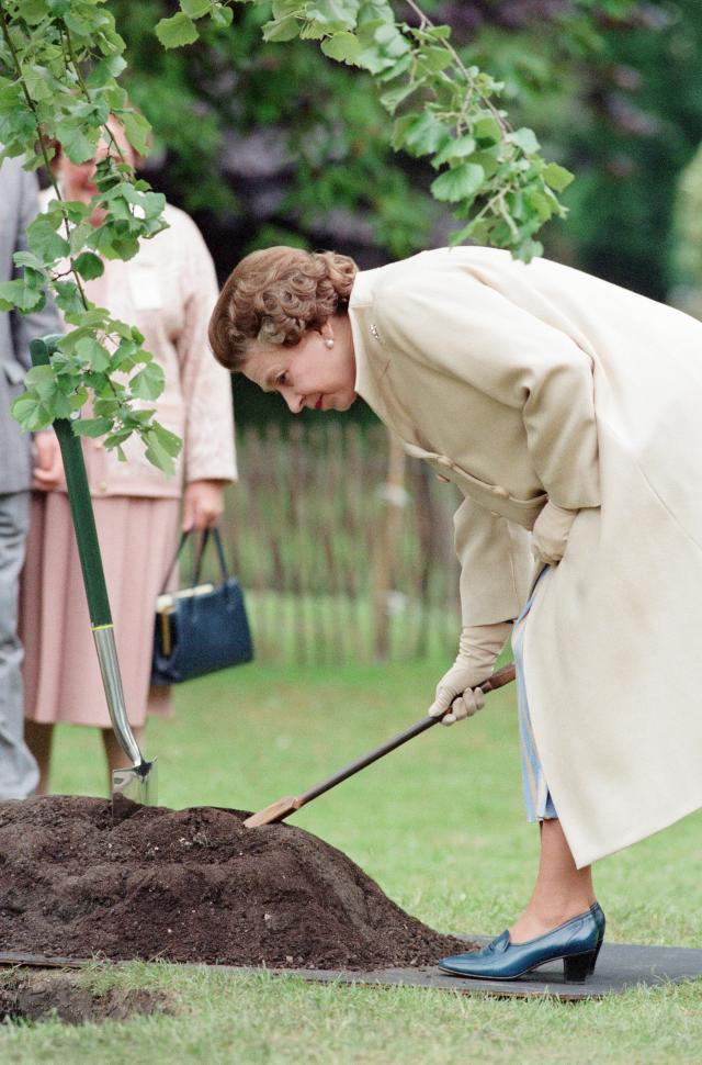 The Queen plants a tree at the show in 1988. (Getty Images)