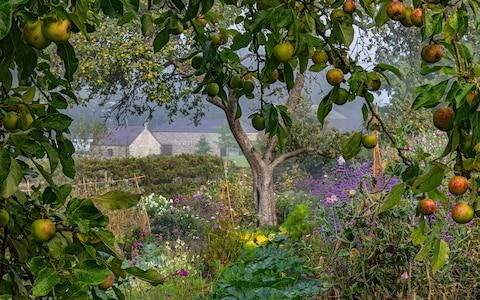 Nigel McCall's 'Morning Mist and Mellow Fruitfulness'