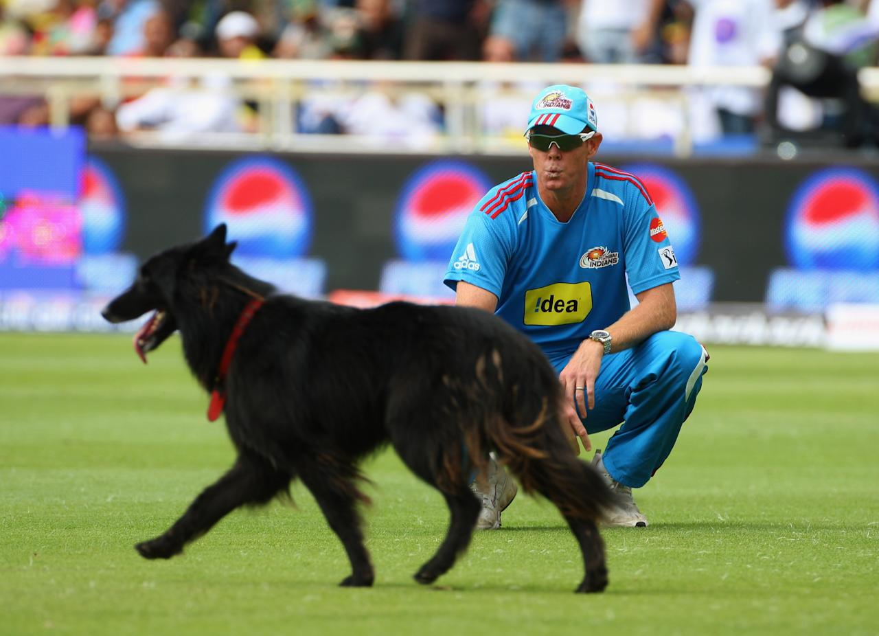 CAPE TOWN, SOUTH AFRICA - APRIL 18:  Shaun Pollock of Mumbai tries to get the stray dogs attention during the IPL T20 match between Mumbai Indians and Chennai Super Kings at Newlands Cricket Ground on April 18, 2009 in Cape Town, South Africa.  (Photo by Tom Shaw/Getty Images)