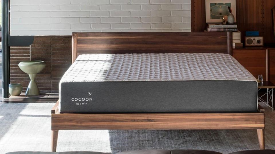Sealy, a well-known mattress brand, now carries a boxed mattress, the Cocoon Chill by Sealy.