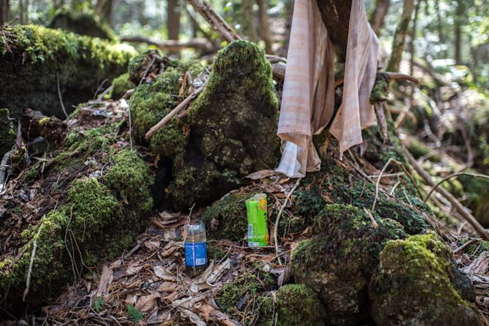 <p>Aokigahara forest lies on the on the northwestern flank of Mount Fuji and in recent years has become known as one of the world's most prevalent suicide sites.</p> (Getty)