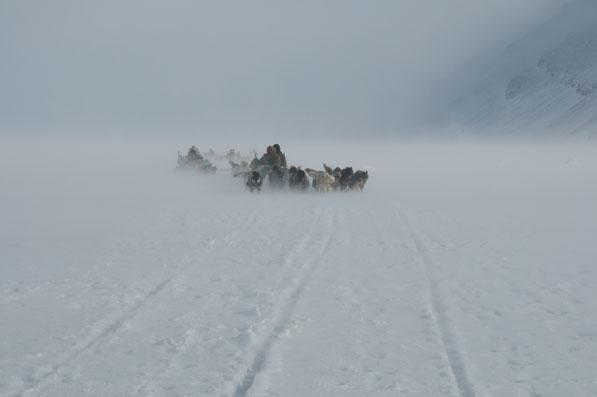Western Greenland - One interesting moment in my life when exposed to the forces of nature of 100  km hour winds © World Wildlife Fund/Uwe Haller
