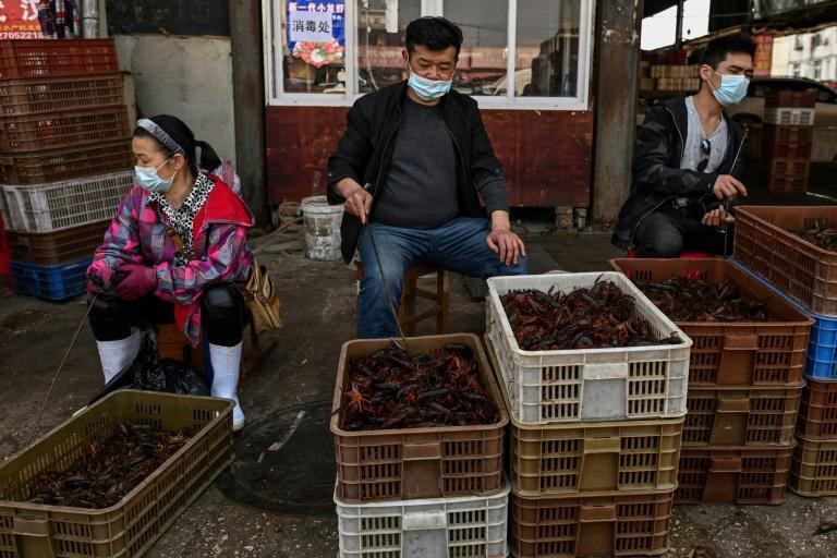 The virus is believed to have emerged at a market that sold live animals in the central city of Wuhan late last year (AFP Photo/Hector RETAMAL)