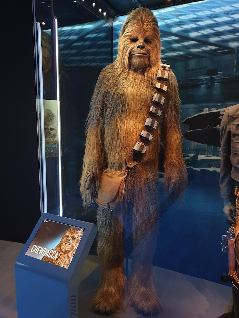 Wookiee costume worn by Peter Mayhew at the Star Wars Identities exhibition in Singapore at the Artscience Museum. (Photo: Teng Yong Ping)