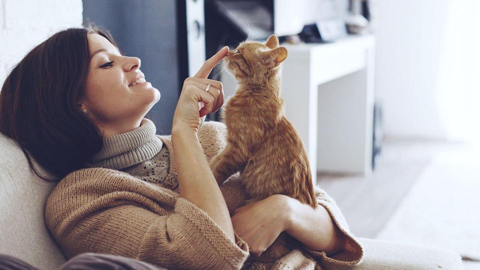 woman playing with kitten at home