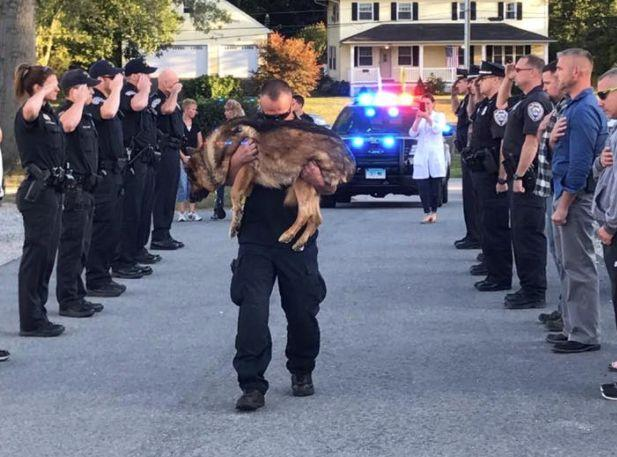 Officer Michael D'Aresta carries Hunter as the Middletown Police Department officers and workers stand in a show of respect.