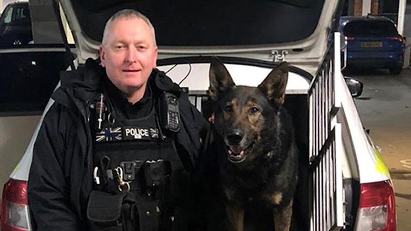 Police dog saves the day in wedding ring drama