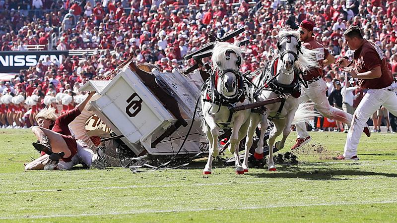 The Oklahoma University 'Sooner Schooner', pictured after it tipped over on Saturday.