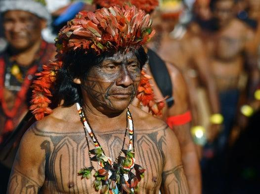 'Let's integrate these citizens': Amazon tribe's survival threatened by Bolsonaro's construction plans