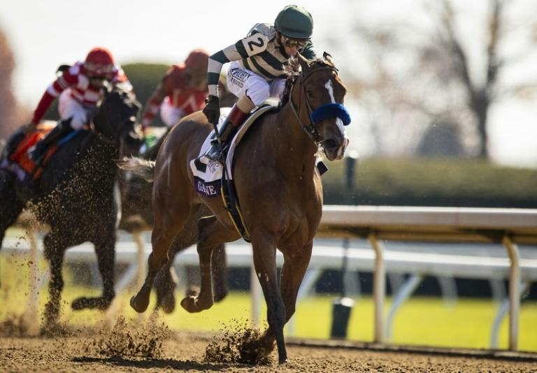 Gamine, ridden by John Velazquez, wins the Breeders' Cup Filly & Mare Sprint at Keeneland in Lexington, Kentucky