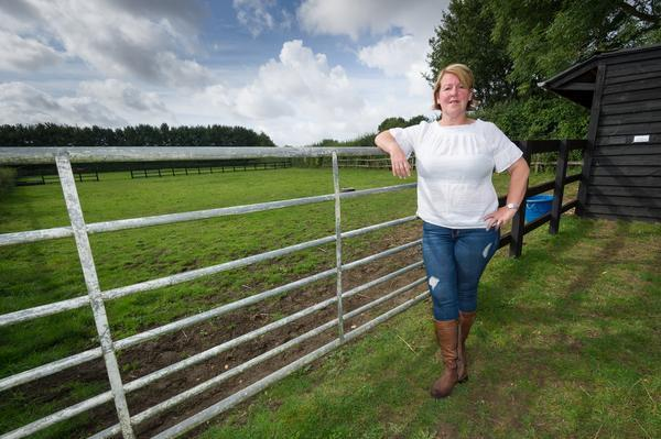 Linda Watson has offered her land for sale (Picture: SWNS)
