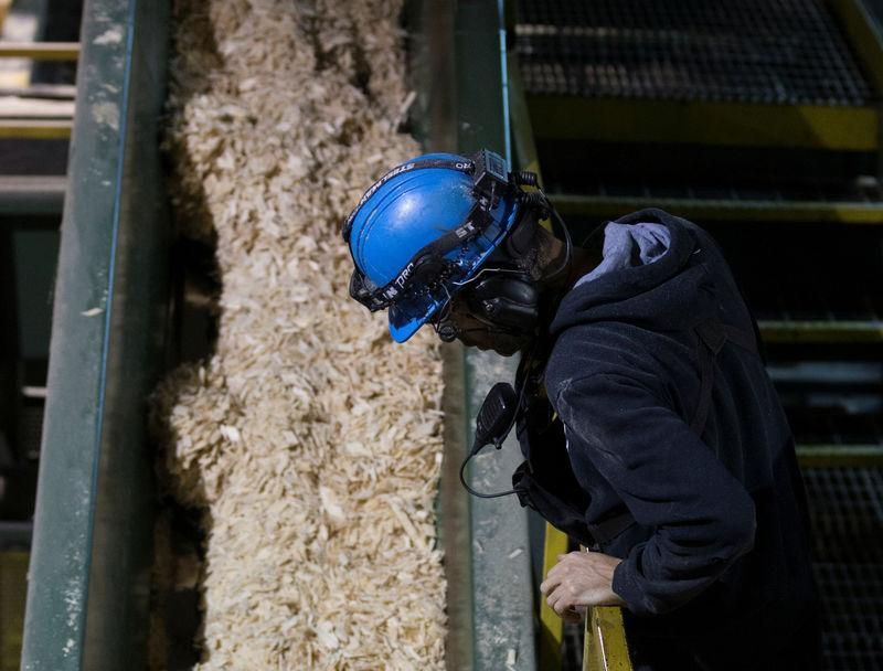 FILE PHOTO - A worker looks over as softwood wood chips are processed at Groupe Crete, a sawmill in Chertsey, Quebec