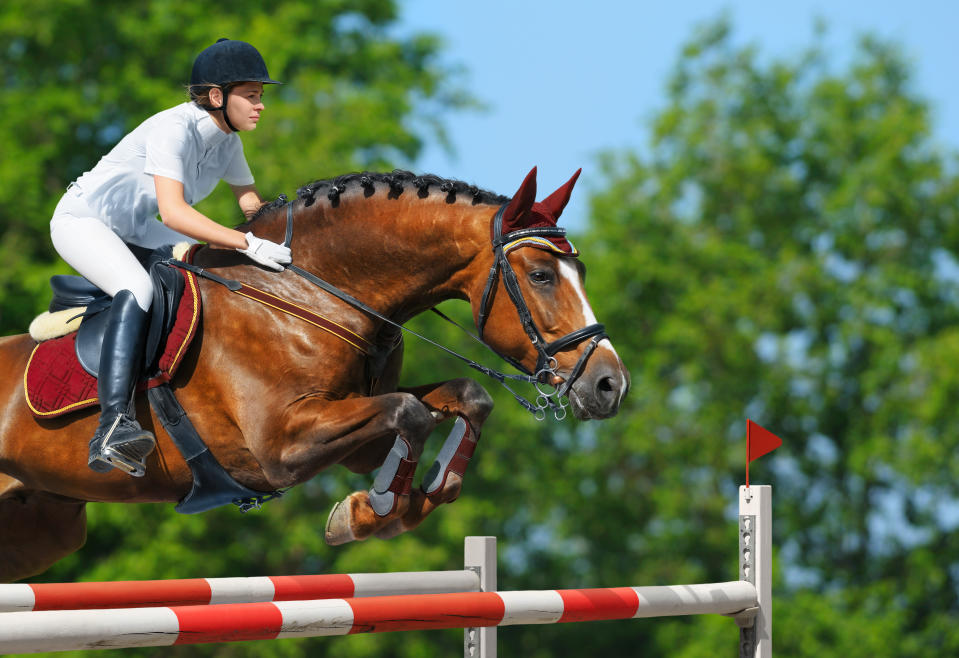 Equestrianism more often known as horse riding or horseback riding refers to the skill and sport of riding, driving, steeplechasing or vaulting with horses. Horses are trained and ridden for practical working purposes, such as in police work or for controlling herd animals on a ranch. They are also used in competitive sports including dressage, endurance riding, eventing, reining, show jumping, tent pegging, vaulting, polo, horse racing, driving, and rodeo. The costs of training and maintaining a horse for the events in equestrian sports can be huge and can include traveling to events and stabling the animal appropriately. The cost of exhibiting a horse on the international circuit can exceed $200,000 a year. This figure does not include the cost of purchasing a horse.