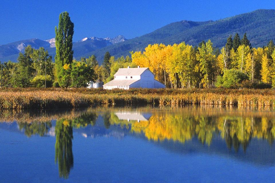 A white barn and beautiful fall foliage is reflected in pond at the Lee Metcalf National Wildlife Refuge. This tranquil scene is near Hamilton, Montana.