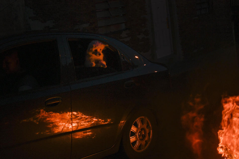 A dog inside a car watches a burning effigy representing Judas Iscariot during Holy Week in the Catia neighborhood of Caracas, Venezuela, Sunday, April 4, 2021. Most people are staying home after Holy Week activities were canceled due to the increase in infections and deaths due to COVID-19. The Burning of Judas is an Easter-time ritual in many communities, where an effigy of Judas Iscariot is hanged on Good Friday, then burned on Easter Sunday. (AP Photo/Matias Delacroix)